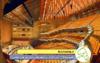 دانلود فایل ورد قابل ویرایش مطالعات مرکز هنرهای نمایشی